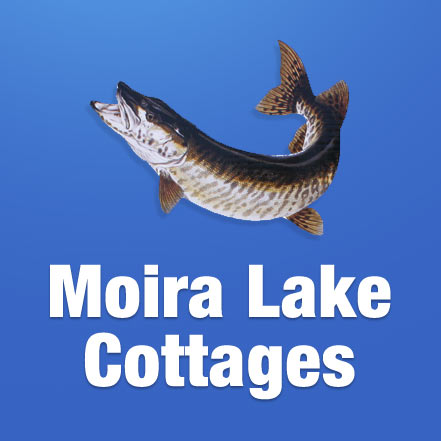 Moira Lake Cottages